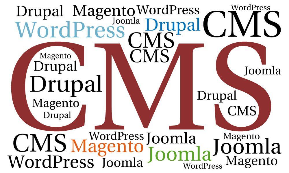 "<strong>Capítulo 1: <a href=""/wordpress/que-es-cms/"">¿Qué es un CMS?</a></strong>"